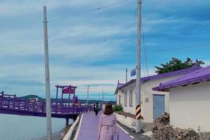 """Khám phá hòn đảo màu tím mộng mơ """"hot hit"""" của Hàn Quốc"""