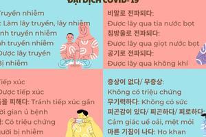 Từ vựng tiếng Hàn theo chủ đề: Đại dịch Covid 19