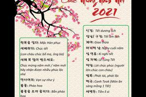 Từ vựng tiếng Hàn theo chủ đề: Tết Nguyên Đán (Seollal)