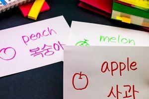 5 cách chinh phục từ vựng tiếng Hàn đơn giản mỗi ngày
