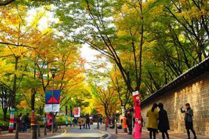 8 trải nghiệm thú vị khi ghé thăm Hàn Quốc mùa thu