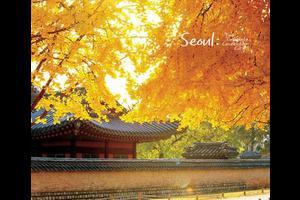 Top 5 địa điểm chụp ảnh mùa thu đẹp ở Hàn Quốc