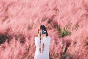 Khám phá cánh đồng cỏ hồng Muhly của cố đô Gyeongju Hàn Quốc